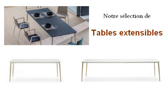 tables-allonges-modernes